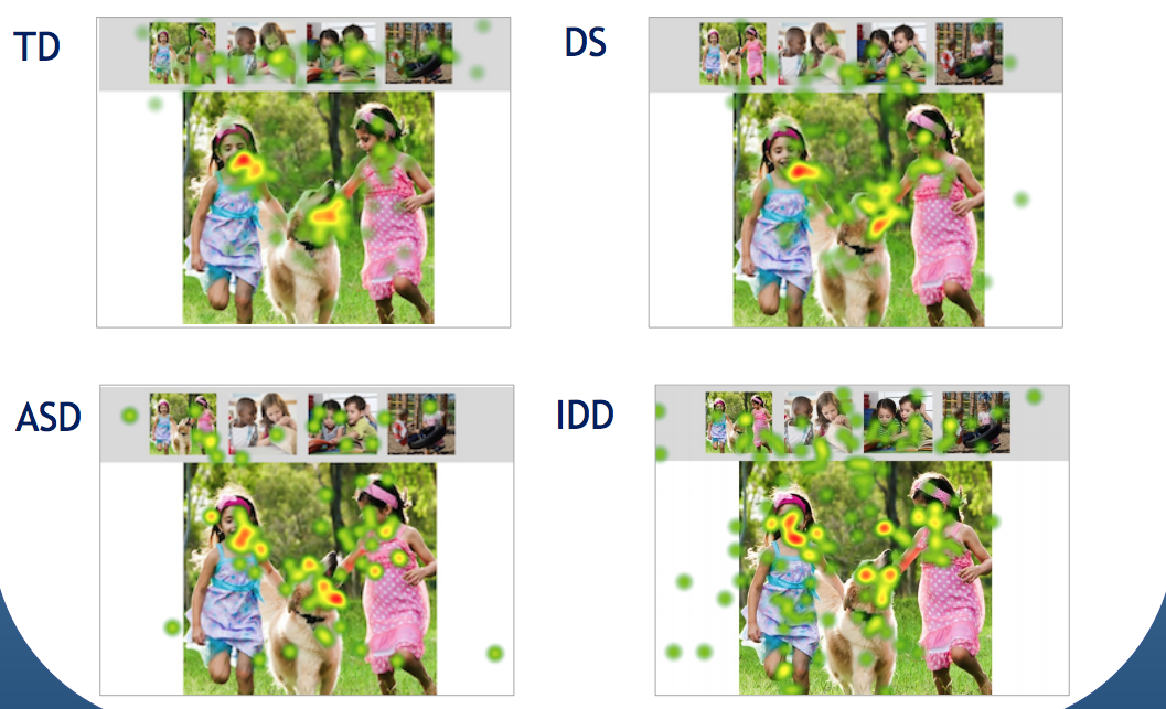 """Heatmaps"" showing where and for how long 4 groups of children looked at a photograph. All 4 groups focused primarily on the 2 kids and the dog in the photo."